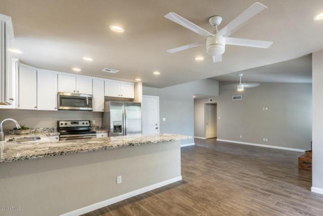 3057 E Edgewood Avenue, Mesa, AZ 85204 (MLS #5771680) :: Arizona 1 Real Estate Team