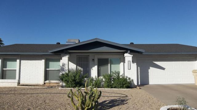 16445 N 60TH Avenue, Glendale, AZ 85306 (MLS #5771682) :: Lux Home Group at  Keller Williams Realty Phoenix