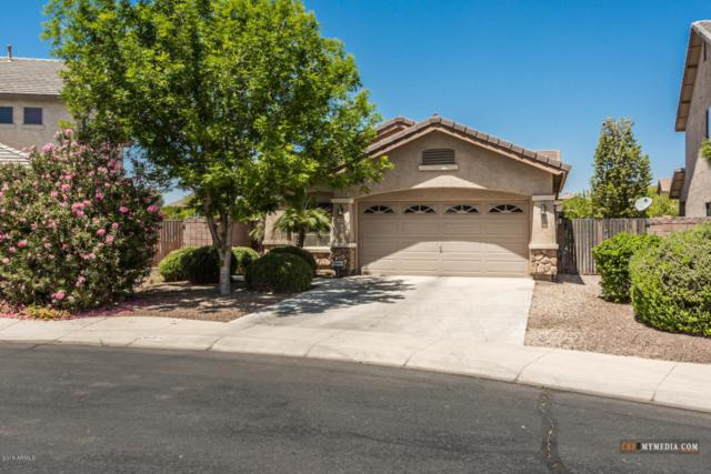 21664 N Greenland Park Drive, Maricopa, AZ 85139 (MLS #5771690) :: Yost Realty Group at RE/MAX Casa Grande