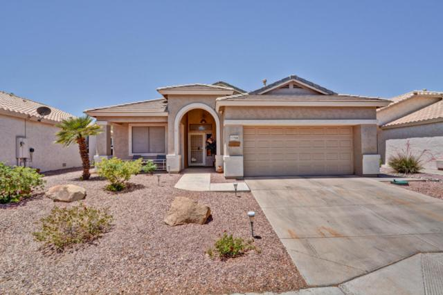 17708 N Phoenician Drive, Surprise, AZ 85374 (MLS #5771691) :: Yost Realty Group at RE/MAX Casa Grande