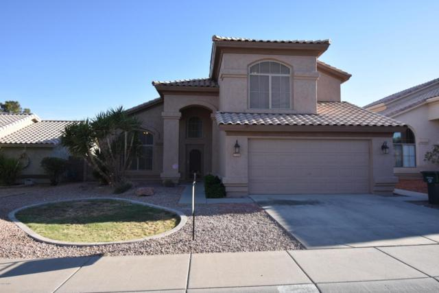 4613 E Summerhaven Drive, Phoenix, AZ 85044 (MLS #5771702) :: Arizona 1 Real Estate Team