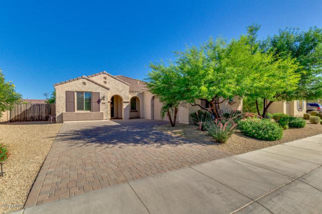 15619 W Roma Avenue, Goodyear, AZ 85395 (MLS #5771723) :: My Home Group