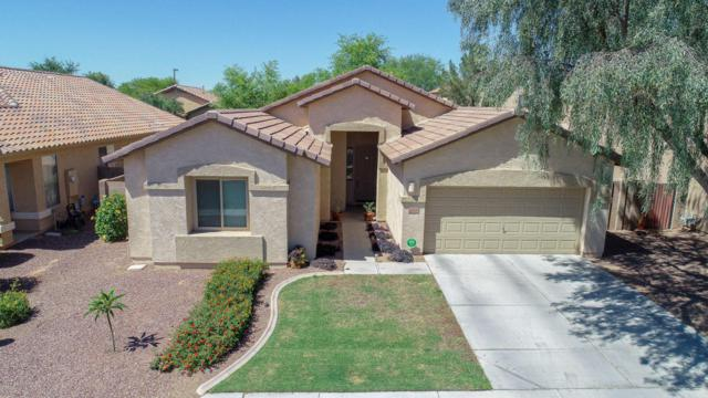 12536 W Glenrosa Drive, Litchfield Park, AZ 85340 (MLS #5771748) :: The Carin Nguyen Team