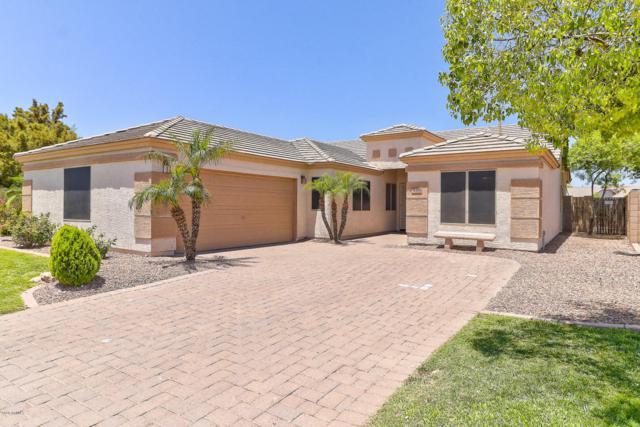 16356 N 164TH Lane, Surprise, AZ 85388 (MLS #5771758) :: Desert Home Premier