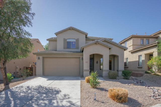 7150 W Red Hawk Drive, Peoria, AZ 85383 (MLS #5771767) :: Desert Home Premier