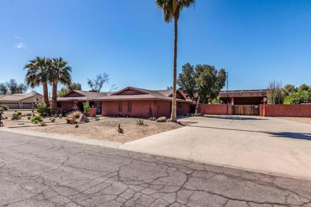 5113 W Misty Willow Lane, Glendale, AZ 85310 (MLS #5771788) :: Keller Williams Realty Phoenix