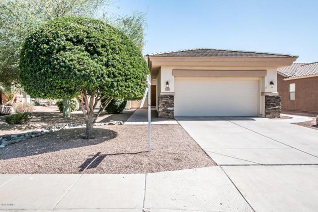 1193 E Las Colinas Drive, Chandler, AZ 85249 (MLS #5771805) :: The Pete Dijkstra Team