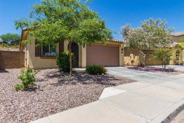22016 N 119TH Drive, Sun City, AZ 85373 (MLS #5771815) :: Desert Home Premier