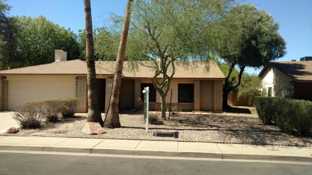 908 W Portobello Avenue, Mesa, AZ 85210 (MLS #5771816) :: The Jesse Herfel Real Estate Group