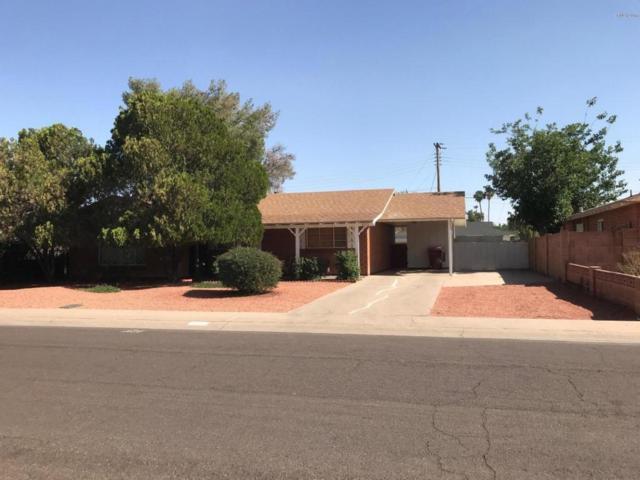 8225 E Columbus Avenue, Scottsdale, AZ 85251 (MLS #5771850) :: The Carin Nguyen Team