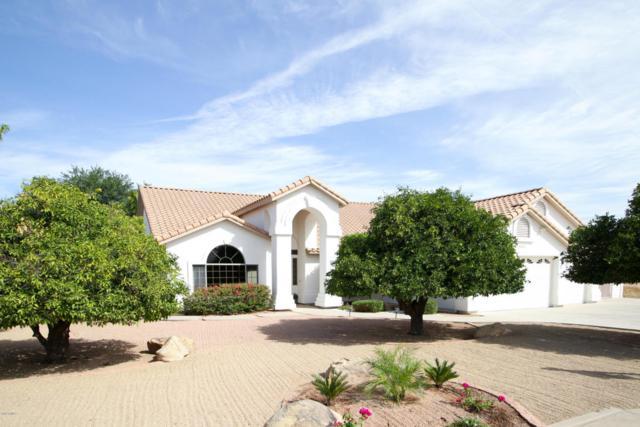 2020 E Norwood Street, Mesa, AZ 85213 (MLS #5771860) :: Yost Realty Group at RE/MAX Casa Grande
