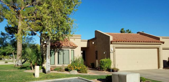 19559 N 96TH Lane, Peoria, AZ 85382 (MLS #5771865) :: Desert Home Premier