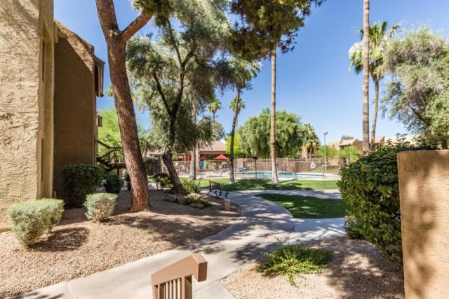 5877 N Granite Reef Road #1119, Scottsdale, AZ 85250 (MLS #5771866) :: The Carin Nguyen Team