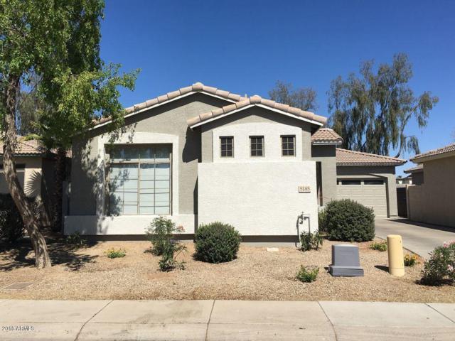 5185 S Eileen Drive, Chandler, AZ 85248 (MLS #5771868) :: My Home Group