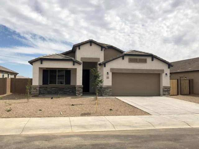 13643 W Briles Road, Peoria, AZ 85383 (MLS #5771871) :: The Carin Nguyen Team