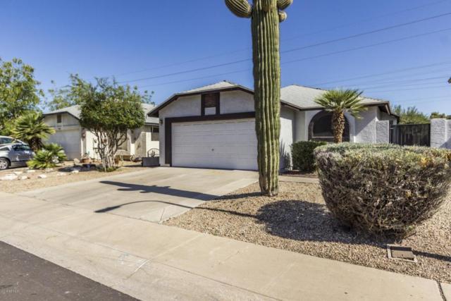 6414 W Puget Avenue, Glendale, AZ 85302 (MLS #5771878) :: The Carin Nguyen Team
