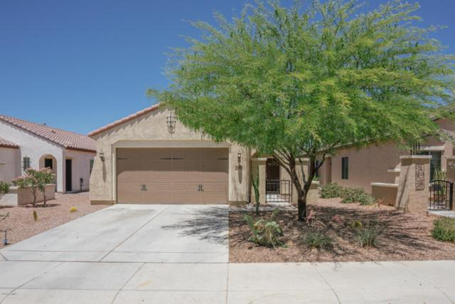 26112 W Tonto Lane, Buckeye, AZ 85396 (MLS #5771882) :: Desert Home Premier