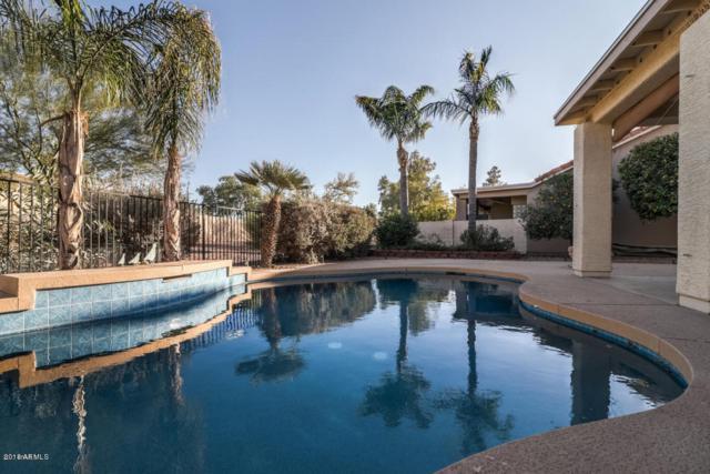 25245 S Flame Tree Drive, Sun Lakes, AZ 85248 (MLS #5771904) :: Yost Realty Group at RE/MAX Casa Grande