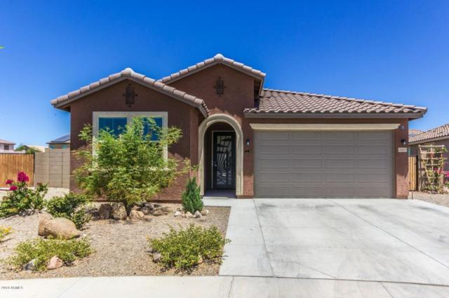 2407 S 172ND Avenue, Goodyear, AZ 85338 (MLS #5771908) :: My Home Group