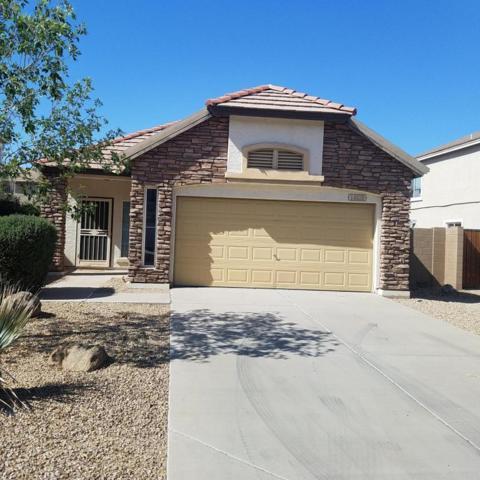 14820 W Columbine Drive, Surprise, AZ 85379 (MLS #5771910) :: Desert Home Premier
