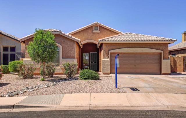 10508 E Forge Avenue, Mesa, AZ 85208 (MLS #5771928) :: The Pete Dijkstra Team