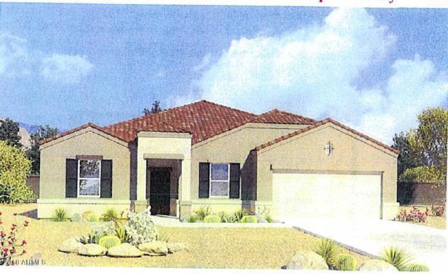 3594 N 306TH Lane, Buckeye, AZ 85396 (MLS #5771970) :: Desert Home Premier