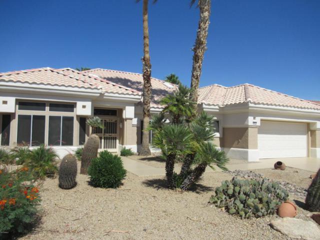 22013 N Venado Drive, Sun City West, AZ 85375 (MLS #5771979) :: Yost Realty Group at RE/MAX Casa Grande