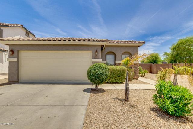39605 N Zampino Street, San Tan Valley, AZ 85140 (MLS #5771981) :: The Carin Nguyen Team