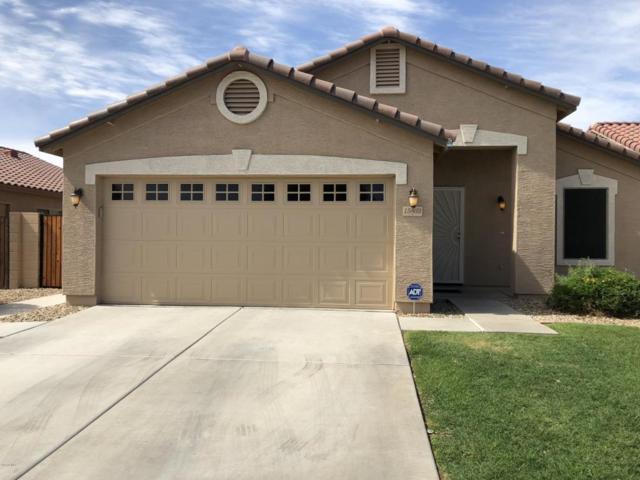 15803 W Crocus Drive, Surprise, AZ 85379 (MLS #5771984) :: Desert Home Premier