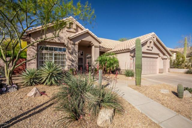 14830 S Foxtail Lane, Phoenix, AZ 85048 (MLS #5771990) :: Essential Properties, Inc.