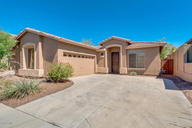 2534 W Florentine Road, Phoenix, AZ 85086 (MLS #5772004) :: Yost Realty Group at RE/MAX Casa Grande