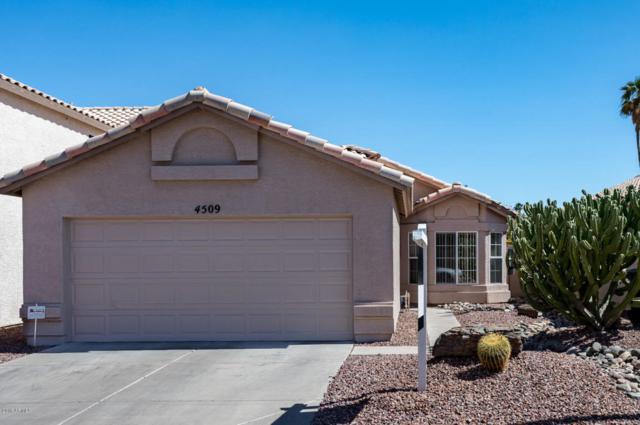 4509 E Sandia Street, Phoenix, AZ 85044 (MLS #5772010) :: Yost Realty Group at RE/MAX Casa Grande