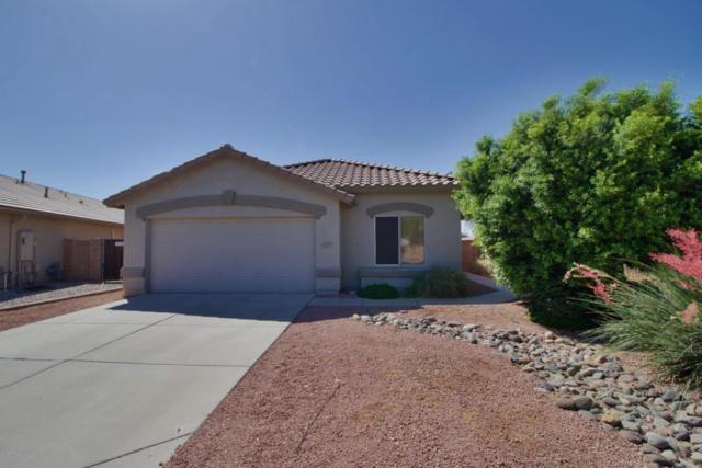 15516 N 156TH Court, Surprise, AZ 85374 (MLS #5772011) :: Desert Home Premier