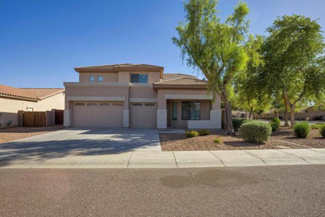 14449 W Evans Drive, Surprise, AZ 85379 (MLS #5772015) :: Desert Home Premier