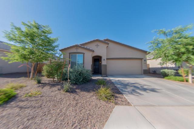 21198 W Berkeley Road, Buckeye, AZ 85396 (MLS #5772018) :: Desert Home Premier