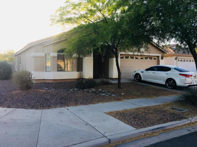 7224 S 38TH Drive, Phoenix, AZ 85041 (MLS #5772024) :: Yost Realty Group at RE/MAX Casa Grande