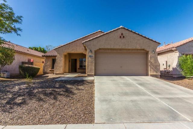 5308 W Desert Hollow Drive, Phoenix, AZ 85083 (MLS #5772028) :: Yost Realty Group at RE/MAX Casa Grande