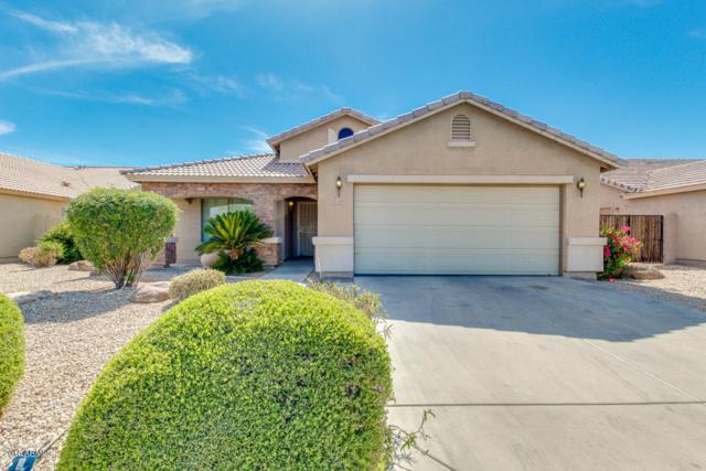 1509 E Alba Drive, Casa Grande, AZ 85122 (MLS #5772217) :: Essential Properties, Inc.
