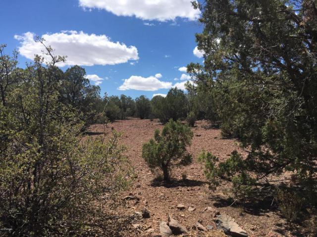 Lot 54 Mohave Kid Road, Kingman, AZ 86401 (MLS #5772276) :: Yost Realty Group at RE/MAX Casa Grande