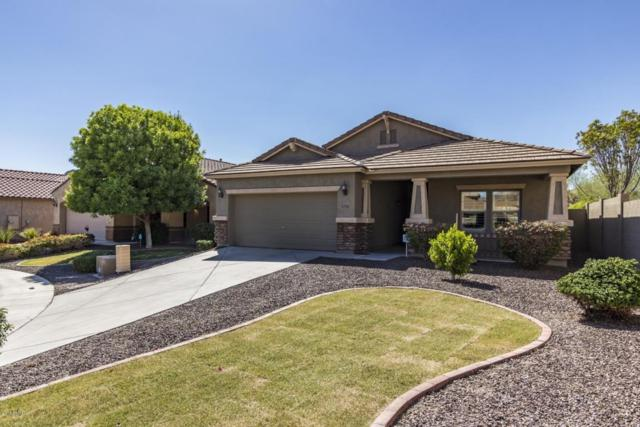 26912 N 52ND Glen, Phoenix, AZ 85083 (MLS #5772287) :: My Home Group