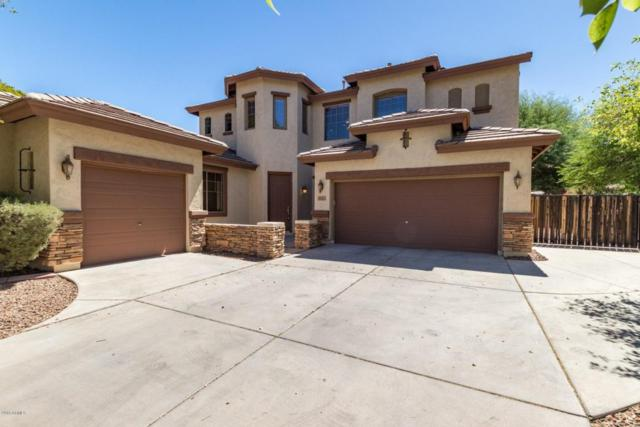 5041 S Marble Street, Gilbert, AZ 85298 (MLS #5772373) :: Lux Home Group at  Keller Williams Realty Phoenix