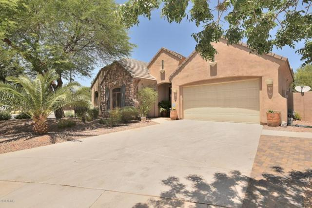 4226 E Maplewood Court, Gilbert, AZ 85297 (MLS #5772402) :: My Home Group