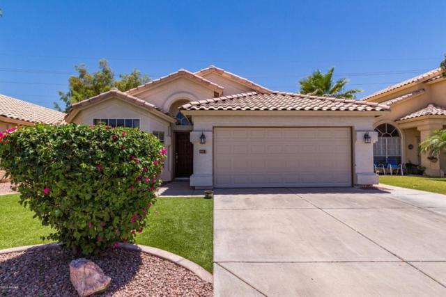 1411 E Cindy Street, Chandler, AZ 85225 (MLS #5772421) :: My Home Group