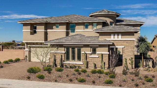 7498 S Portland Court, Gilbert, AZ 85298 (MLS #5772469) :: Team Wilson Real Estate