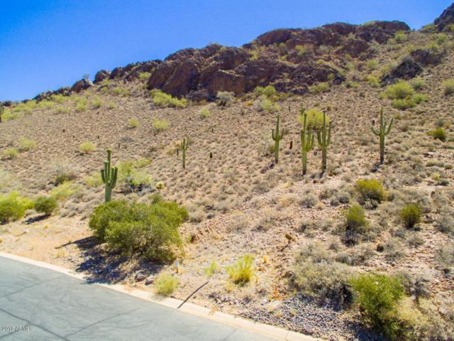 5183 S Avenida Corazon De Oro, Gold Canyon, AZ 85118 (MLS #5772497) :: Phoenix Property Group