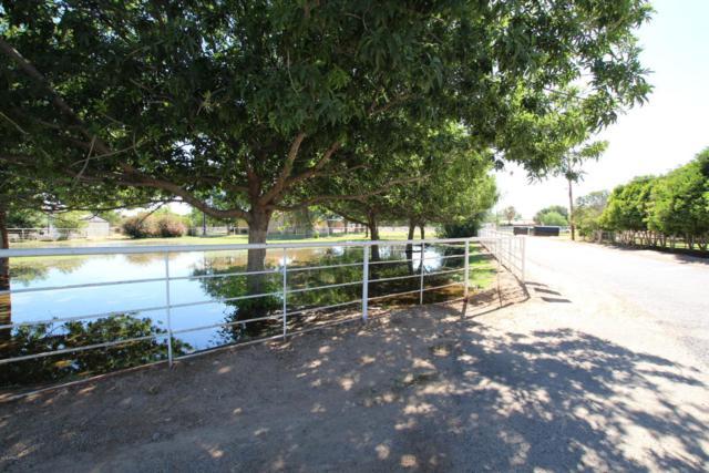 17534 E Brooks Farm Road, Gilbert, AZ 85298 (MLS #5772516) :: The Daniel Montez Real Estate Group