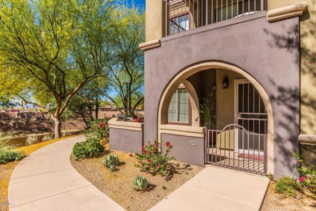 3935 E Rough Rider Road #1206, Phoenix, AZ 85050 (MLS #5772521) :: Riddle Realty