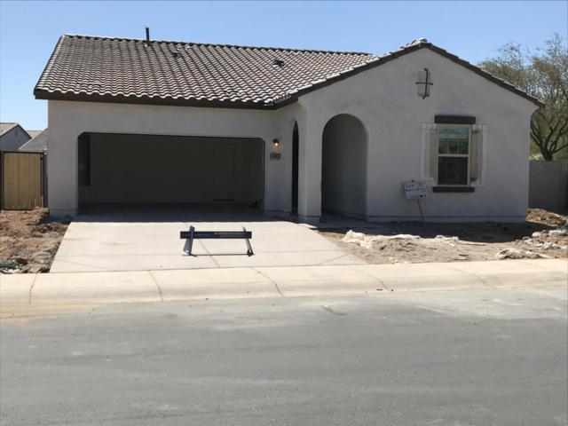 37077 W Mattino Lane, Maricopa, AZ 85138 (MLS #5772622) :: My Home Group