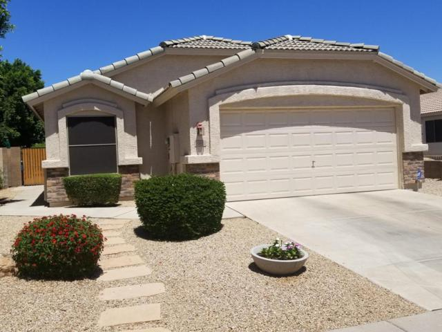 19851 N 35TH Street, Phoenix, AZ 85050 (MLS #5772632) :: Essential Properties, Inc.
