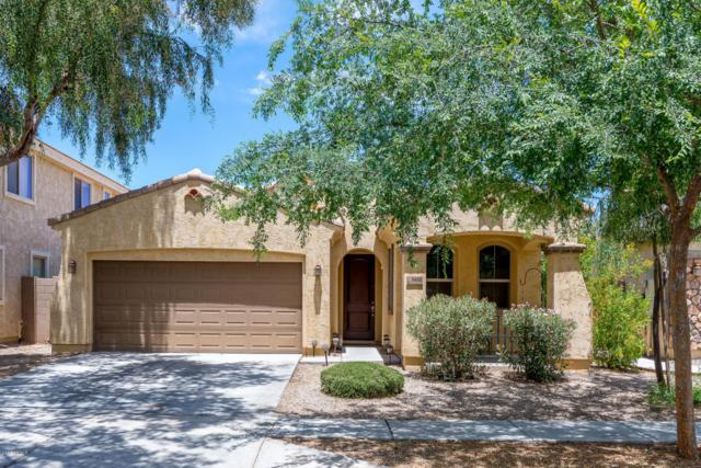 3488 E Liberty Lane, Gilbert, AZ 85296 (MLS #5772680) :: The Everest Team at My Home Group